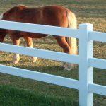 Horse ranch PVC fence
